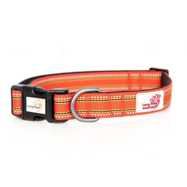 Long Paws Comfort Collection - Orange Collar