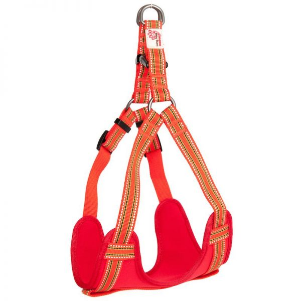 Long Paws Comfort Collection - Orange Harness