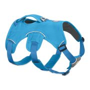 newCopy of 30102-WebMaster-BlueDusk-2500